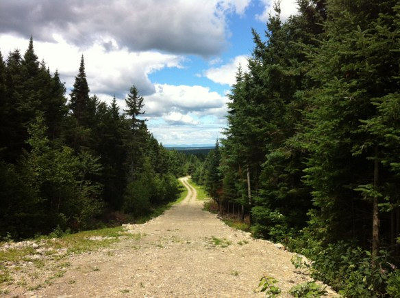 Le Chemin (anciennement de Saint-Rémi), Québec, photo Michel O'Neill