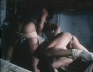 Les minets sauvages 1984