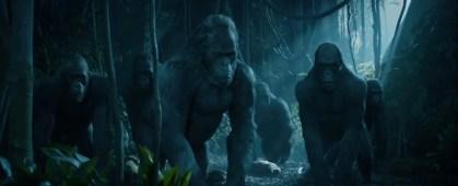 Legend of Tarzan 03