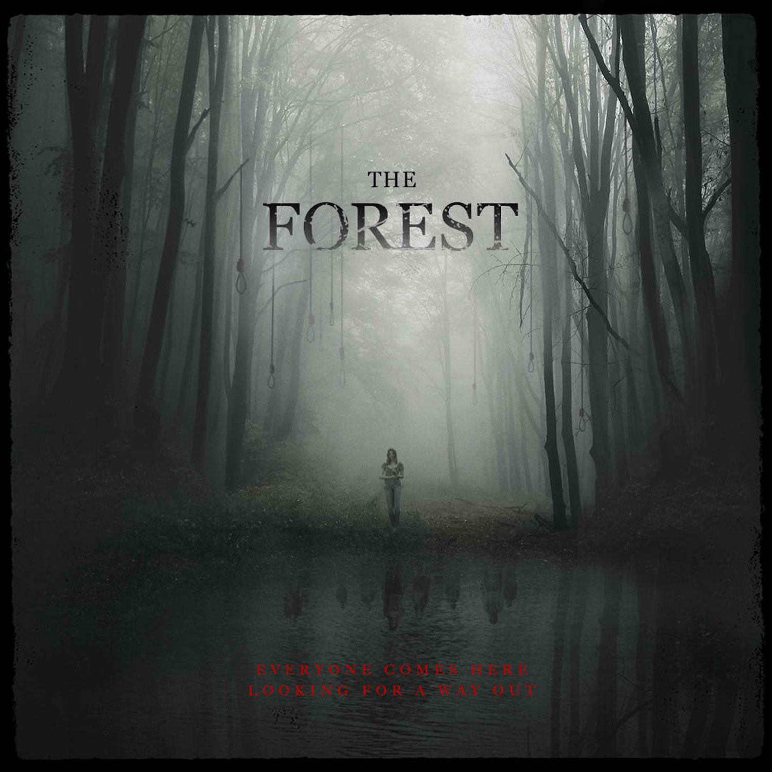 Forest-01