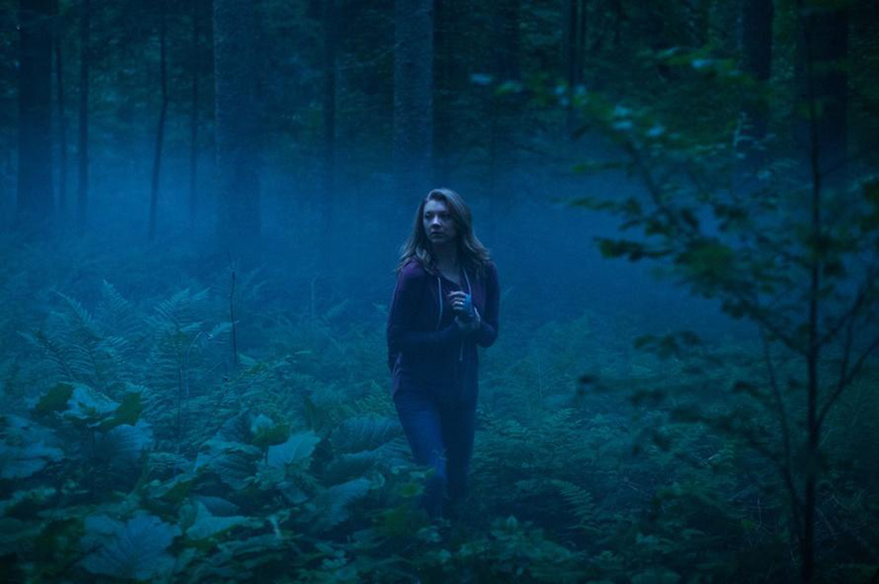 Forest-NDormer_01