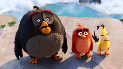 bomb_red_chuck_angry_birds
