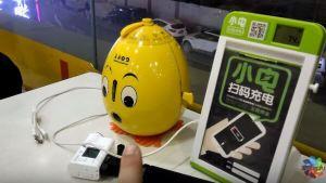 Наши в Китае яйцо предсказаний и пластырь для спины