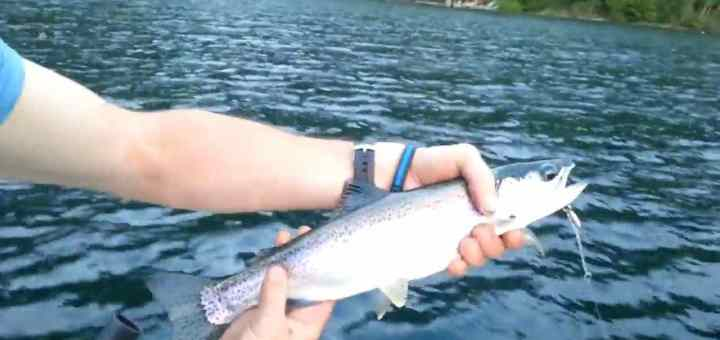 British Columbia Freshwater Fishing Guides