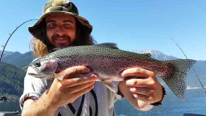 Big Rainbow Trout fishing BC