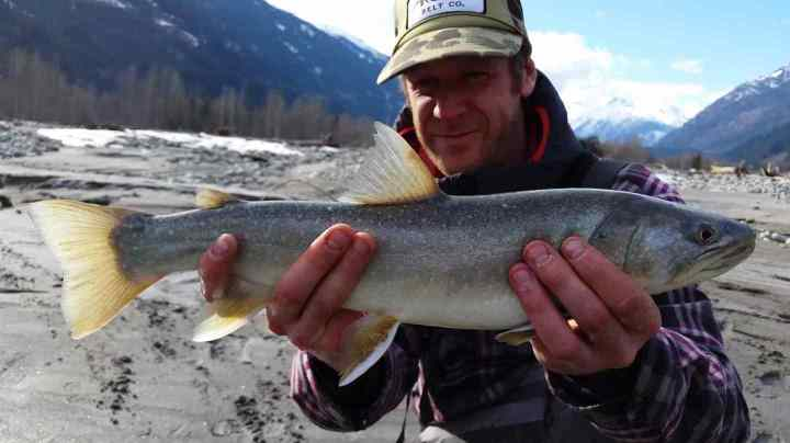 Fly fishing Whistler BC