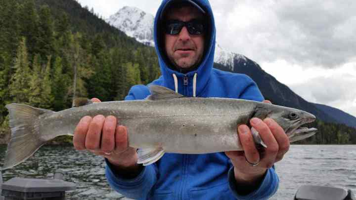 Whistler fishing pictures