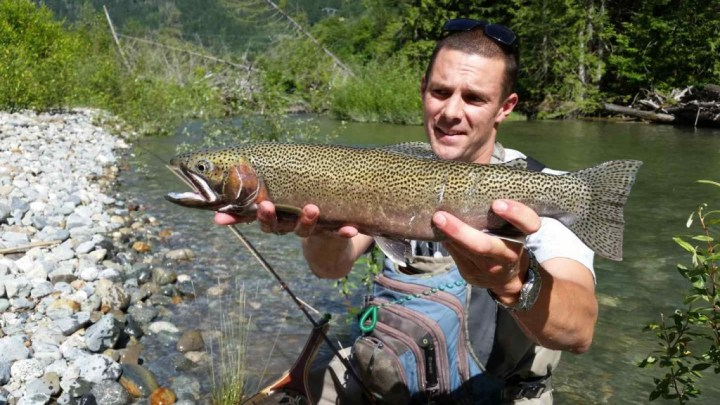 Fly fishing trips BC Canada