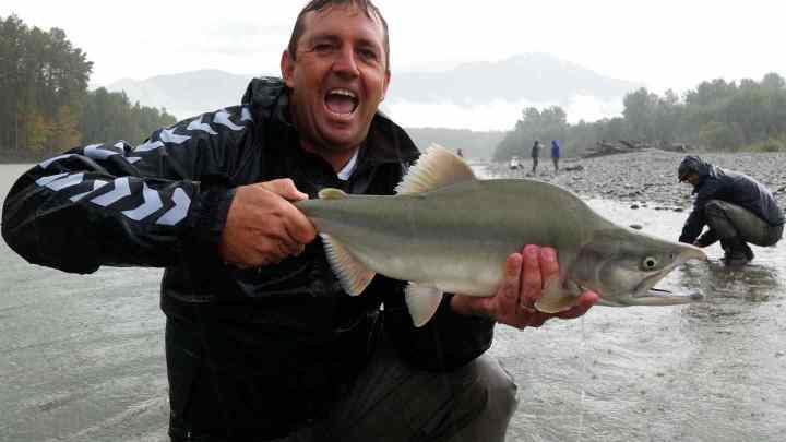Pink Salmon fishing in Squamish