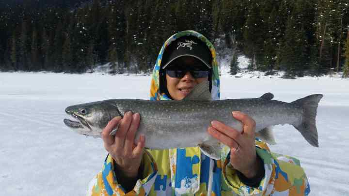 Ice fishing trips for Big Bull Trout in Pemberton BC