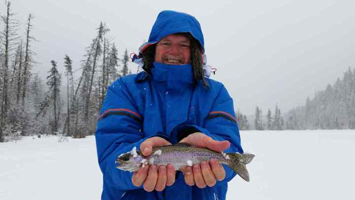 Rainbow Trout Ice fishing