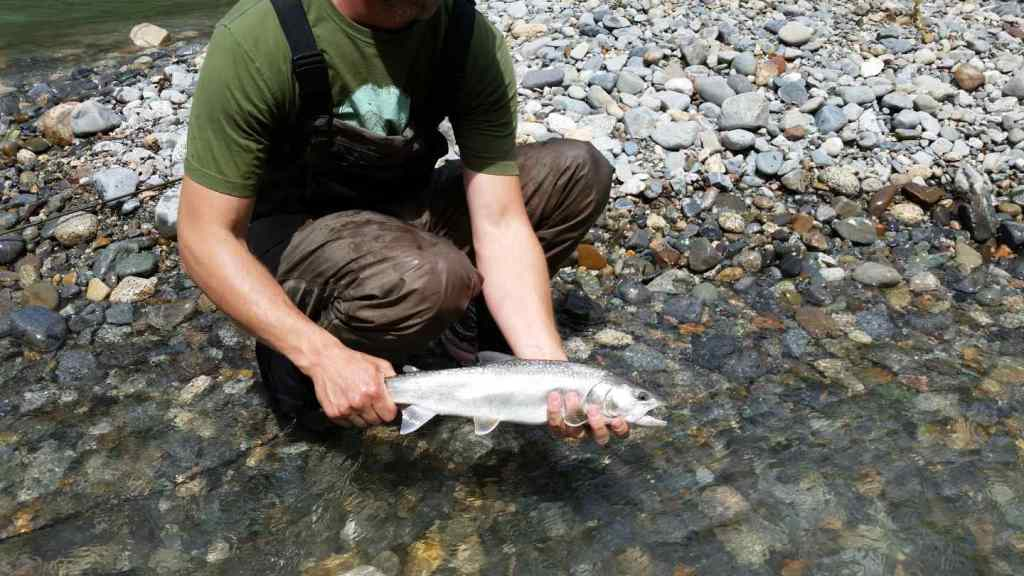 Fly fishing rivers near Whistler BC