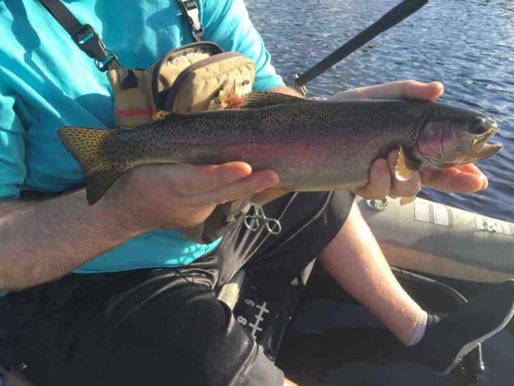 Remote BC Fly Fishing Tips Gwyneth Lake