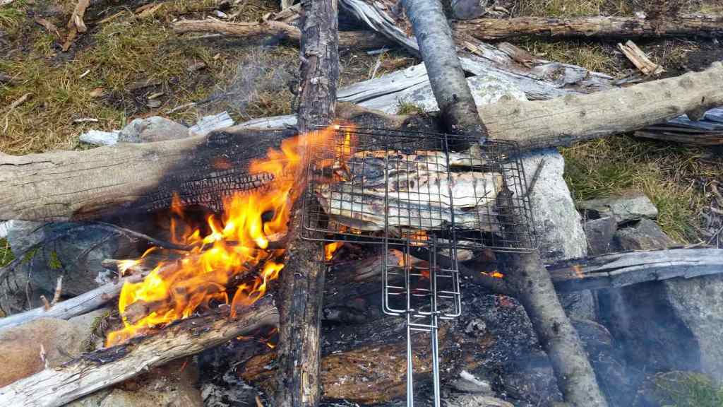 Cooking Trout on a campfire