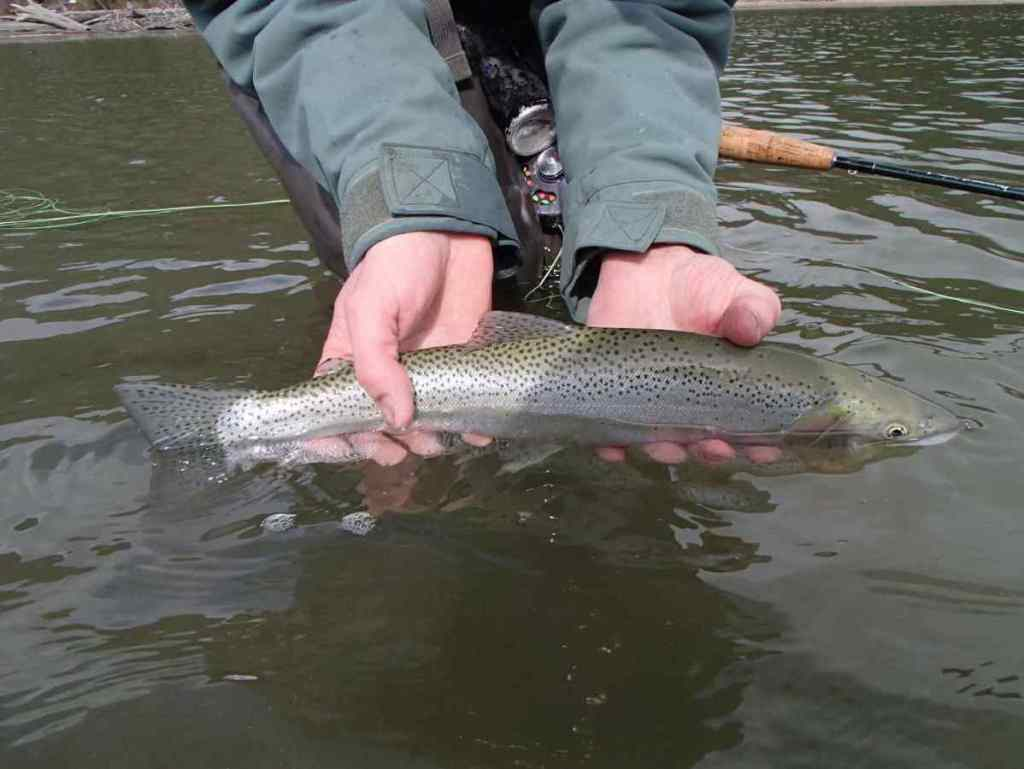 Fishing trips in Pemberton BC