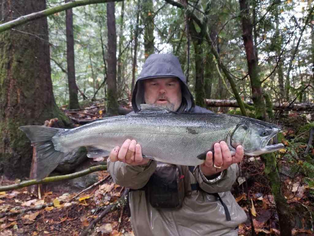 Hatchery Coho Salmon Fishing