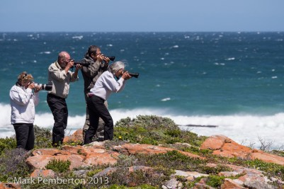 Lynne, Tom, Dan and Cathy take aim at the Bontebok.