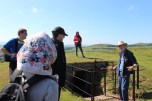A kissing gate, as Adrian explains, prevents sheep getting past; you would turn to kiss your partner after you pass through.
