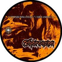 CONMET.Disc600