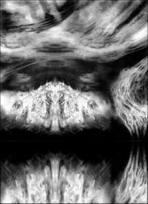 Midian 2 - Adagio Fine
