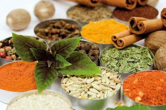 bahan tradisional dari tanaman obat herbal diabetes alami