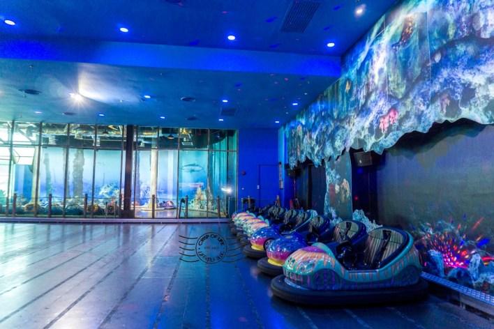 the top boutique aquarium