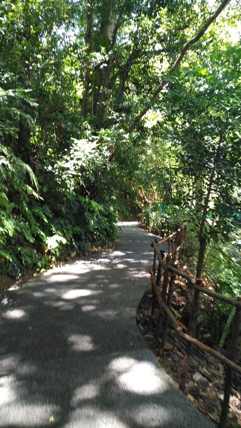 Beautiful path.