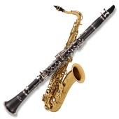 woodwind instruments Penarth Music Centre near cardiff