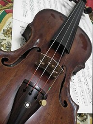 Bowed Strings