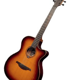 Lag acoustic guitars available at pencerdd music store Penarth