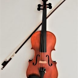 Stentor Elysia Violin available at Pencerdd Music Store Penarth near Cardiff