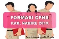 Formasi CPNS Kabupaten Nabire Tahun 2019
