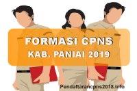 Formasi CPNS Kabupaten Paniai Tahun 2019