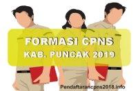 Formasi CPNS Kabupaten Puncak Tahun 2019