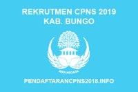 Rekrutmen CPNS Kabupaten Bungo Tahun 2019