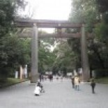 Meiji Shrine-1