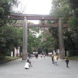 Meiji Shrine-1