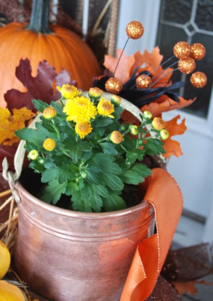 fall-decor-to-halloween-feathers