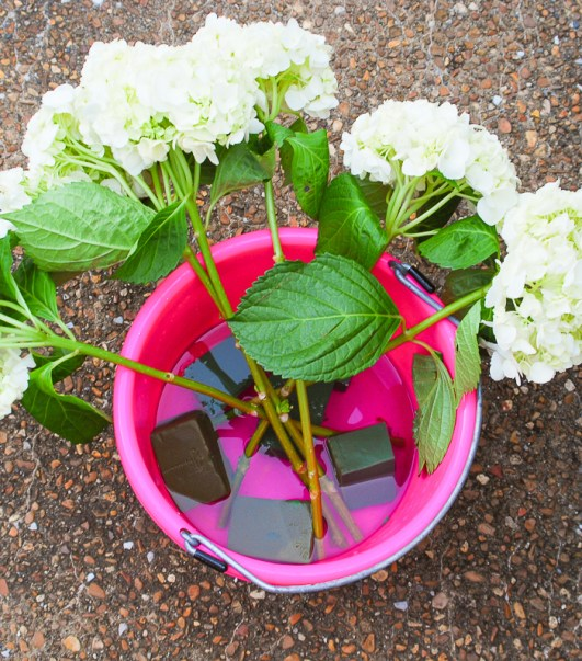 Step 3 to create hydrangea centerpiece - cut floral foam and hydrangea stems and soak in water