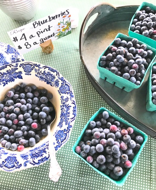 Sycamore Hill Blueberries