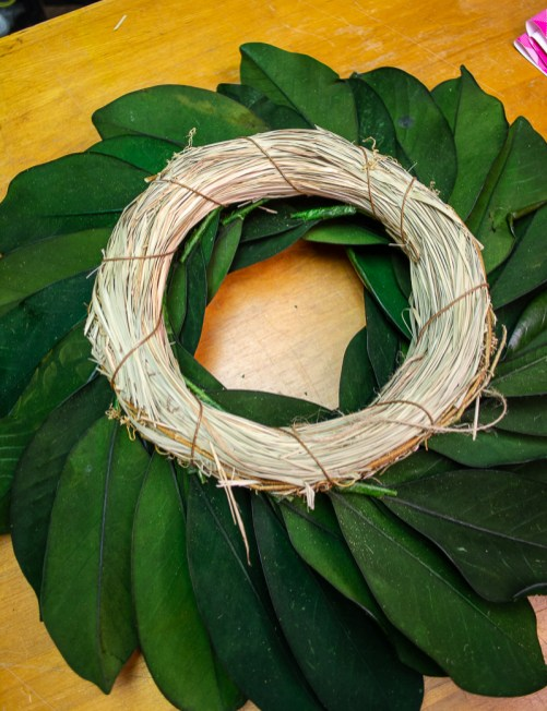 Back of preserved magnolia wreath showing straw ring