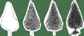 pine_tree_pen_ink_drawing