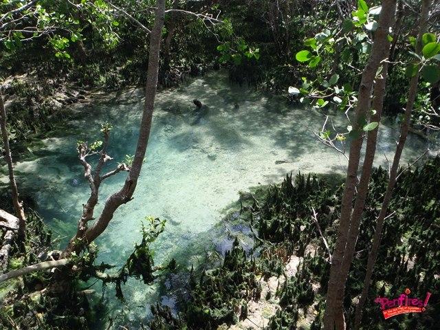 Tourist Spot in Siquijor - Guiwanon