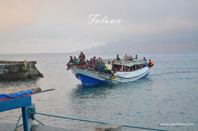 Faluwa Tataya Boat