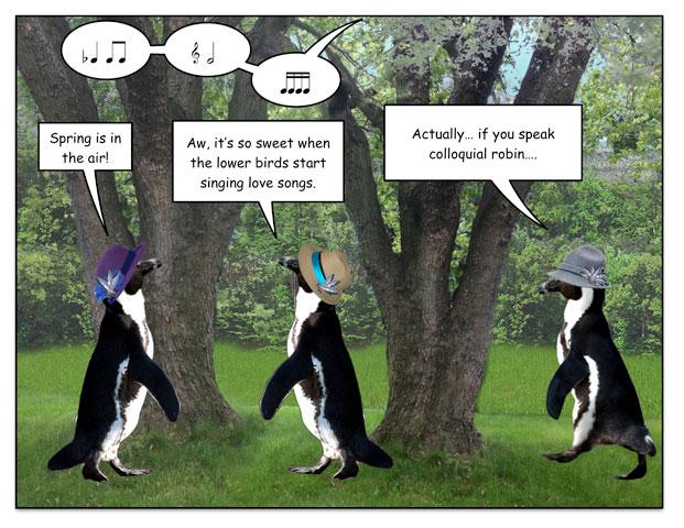 birdspring-1.jpg