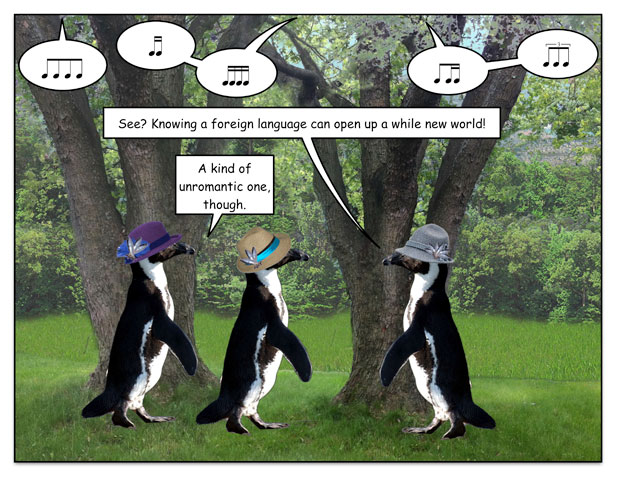 birdspring-4.jpg