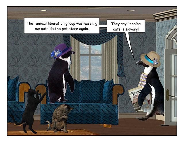 catsexplain-1.jpg