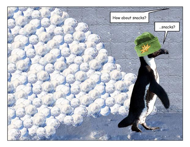 snowfort-3.jpg