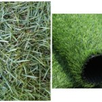 Lebih Baik Rumput Sintetis atau Rumput Asli?