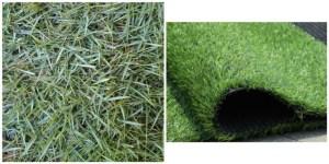 rumput asli atau palsu